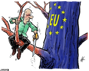 EU: It grows on us - Maarten Wolterink, 2014